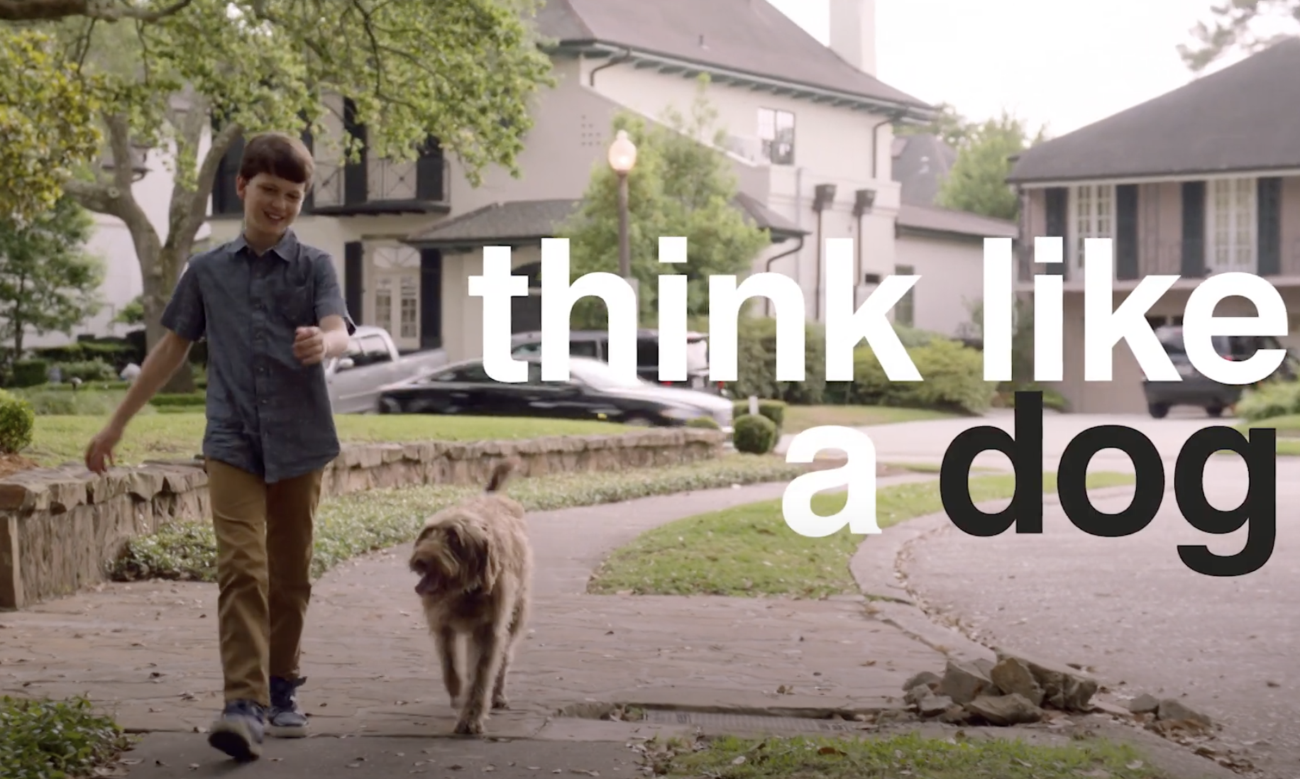Feature Film 'Think Like A Dog' || Casting, Regie, Opname en mix Dubbing